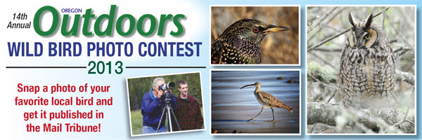 Oregon Outdoors Bird Photo Contest